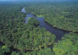 Tortuguero Canals and National Park, Costa Rica