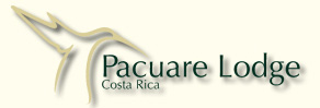 Pacuare Eco Lodge is only accessible rafting or hiking...